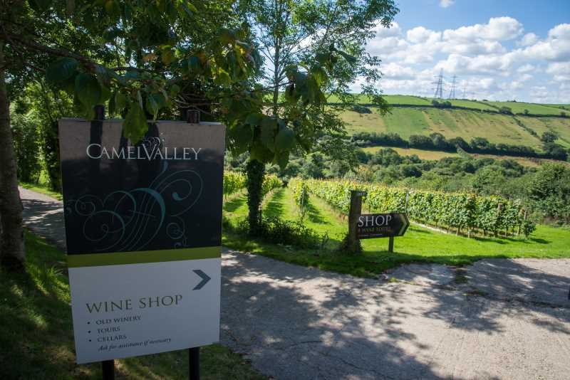A sign pointing to Camel Valley's wine shop with vines in the background